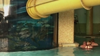 Golden Nugget's Shark Pool